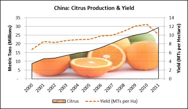 China Citrus Production and Yield