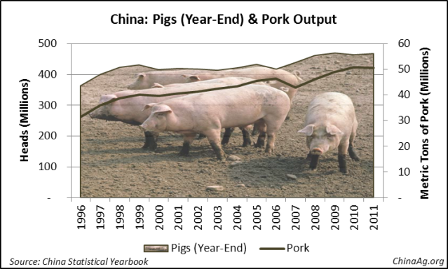 China Pig Pork Hog Production