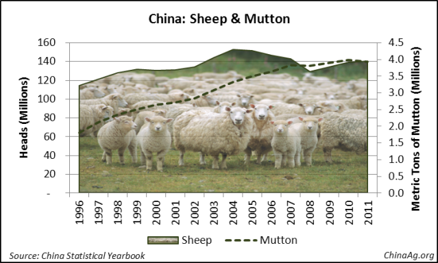 China Sheep Mutton Production
